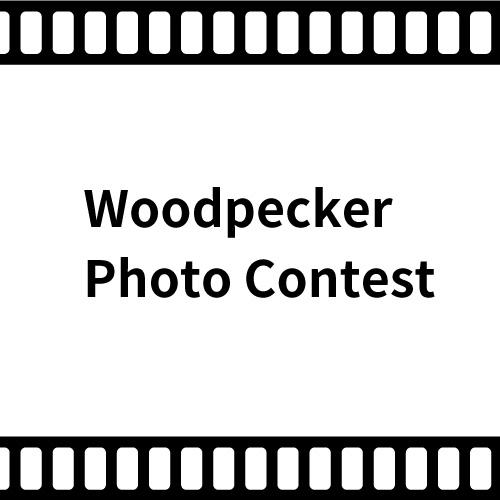 第1回 Woodpecker フォトコンテスト